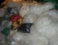 惠州废料废品回收公司